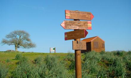 La Valle del Tirso: grembo fertile di Sardegna