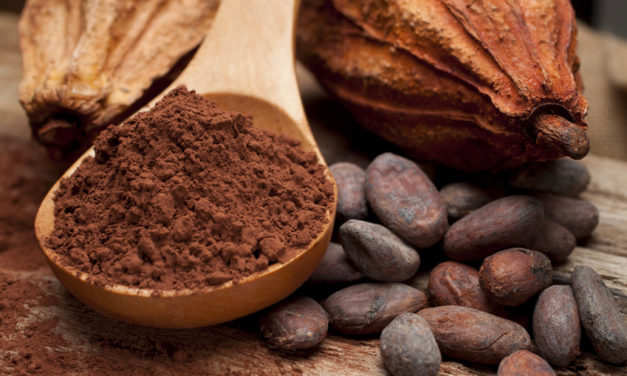 La Via toscana del cacao