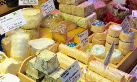 Erbavoglio: dai pascoli i migliori formaggi!